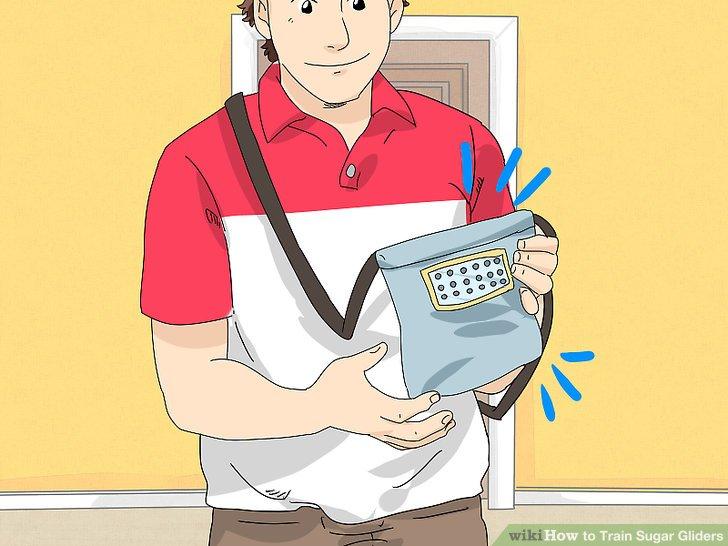 Bringen Sie den Gleiter in seiner Tasche mit in den Raum.