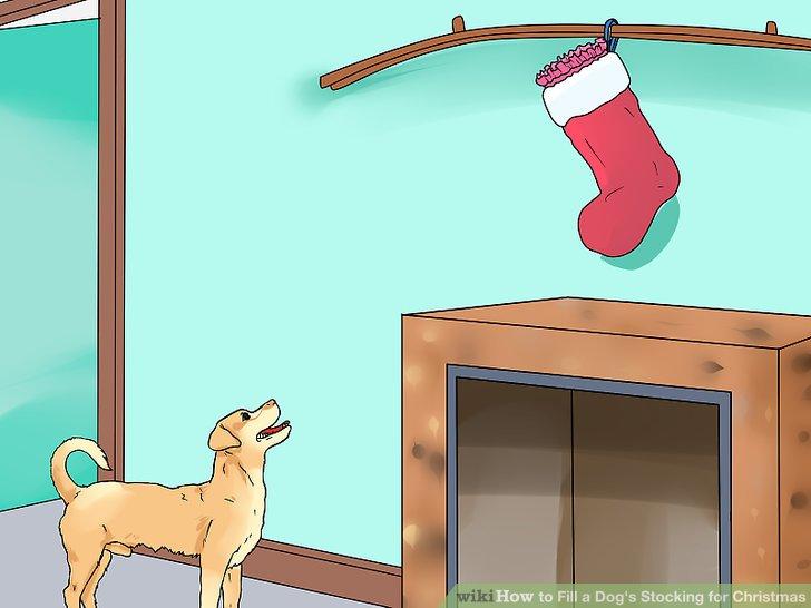 Hängen Sie den Strumpf aus der Reichweite Ihres Hundes.