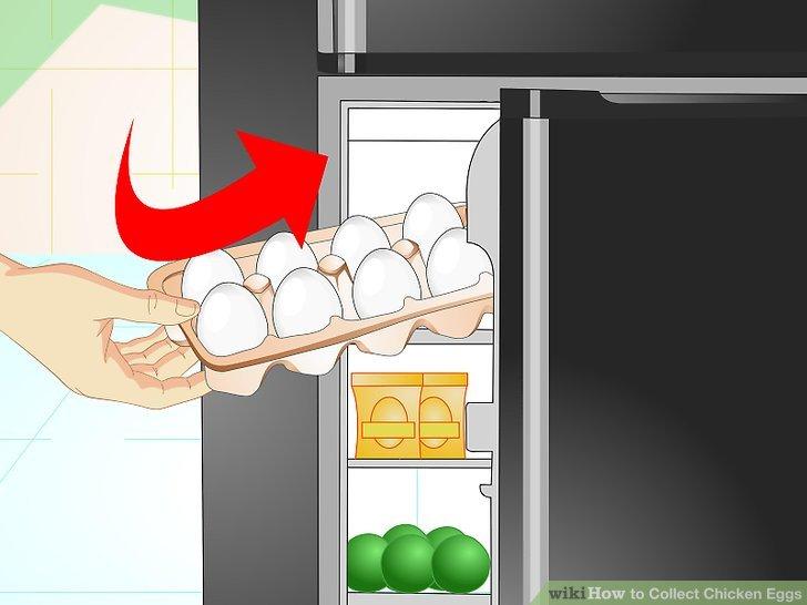 Keep eggs refrigerated.