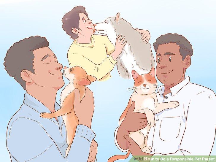 Kaufen Sie Spielzeug, um Ihr Haustier zu stimulieren.