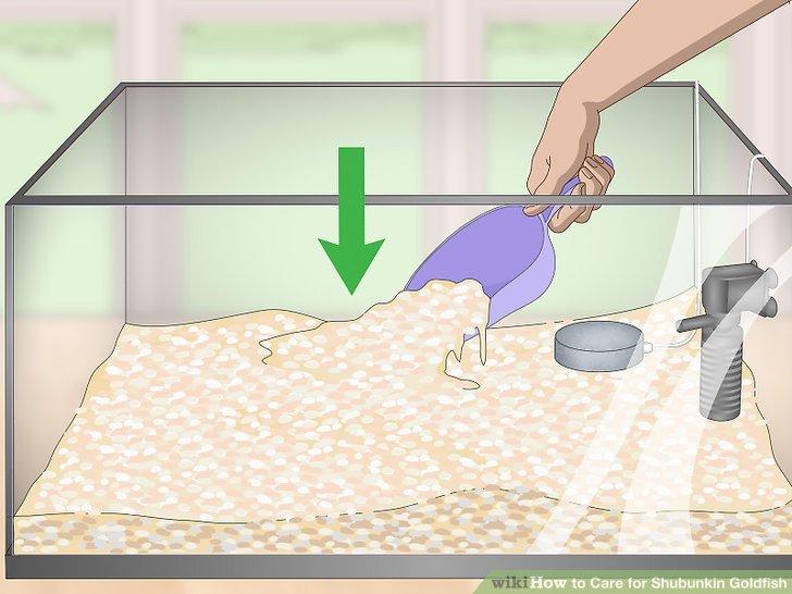 Fügen Sie Ihrem Tank ein Kies-Substrat hinzu.