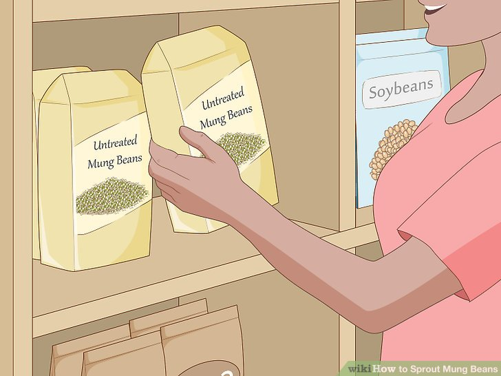 Purchase whole, untreated mung beans.