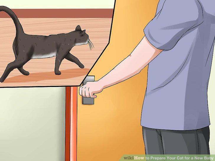 Halten Sie Ihre Katzen im Haus.