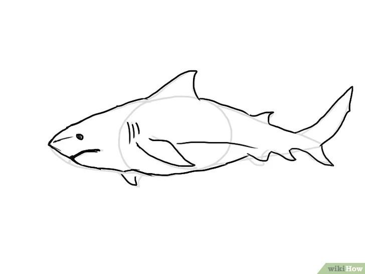 4 Cara untuk Menggambar Ikan Hiu - wikiHow