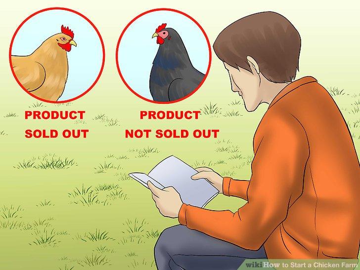 Passen Sie Ihre Hühnerauswahl an die Verkäufe Ihrer Produkte an.