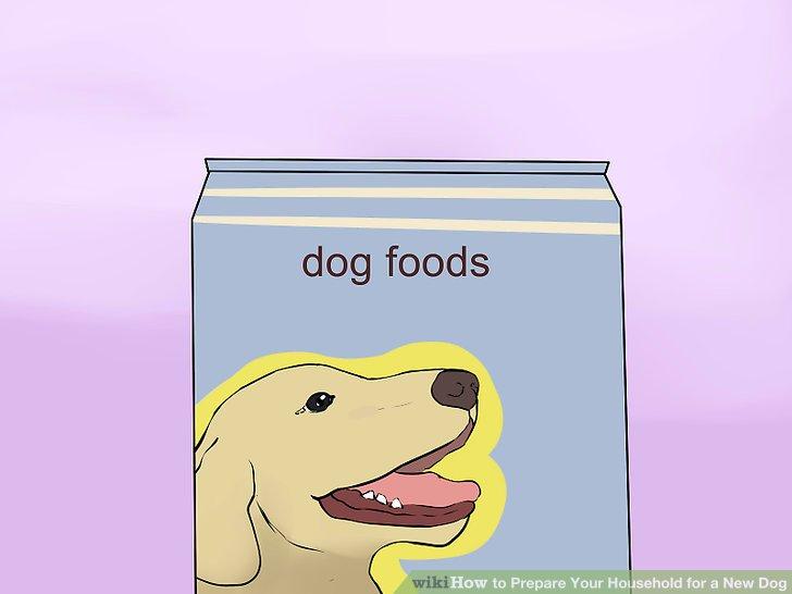 Suchen Sie die Futter- und Wasserschalen Ihres Hundes aus.