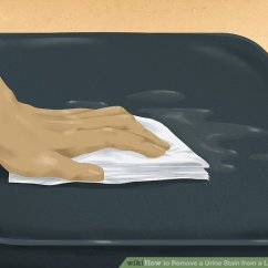 Cat Urine On Leather Sofa Scandinavian Sofas Australia How To Remove A Stain From Couch 7 Steps Image Titled Step 1