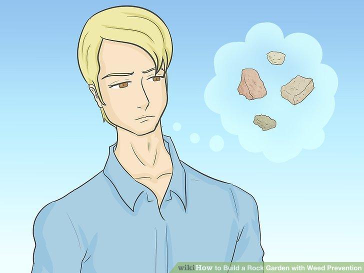 Entscheiden Sie, welche Art von Steingarten Sie pflanzen möchten.