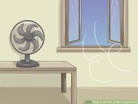 3 Ways to Get Rid of Wet Carpet Smell - wikiHow