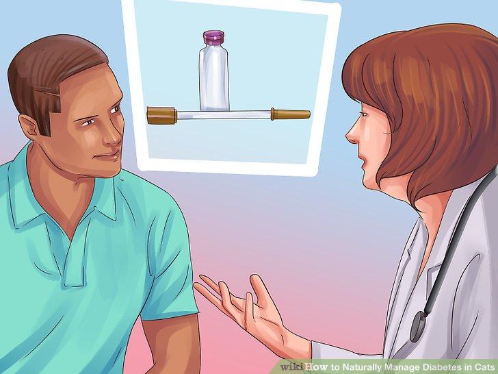 Besprechen Sie die Notwendigkeit von Insulin mit einem Tierarzt.