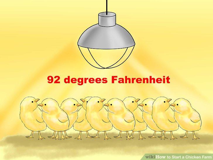 Verwenden Sie eine Lampe, um den Stall warm zu halten.