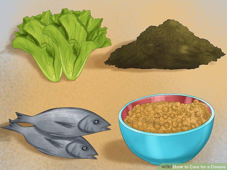 Ergänzen Sie Ihre Diät mit zusätzlichen Vitaminen und Mineralien.