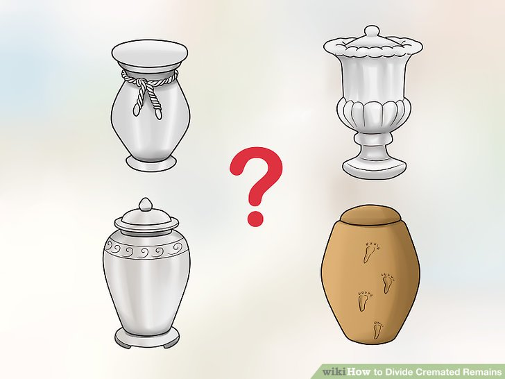 Determine the kind of urns that you want.