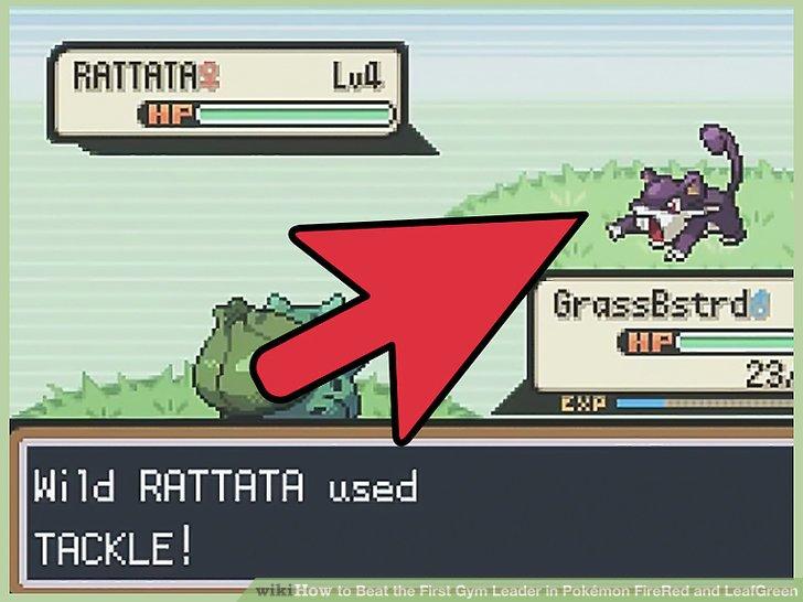 Trainiere eine Rattata.