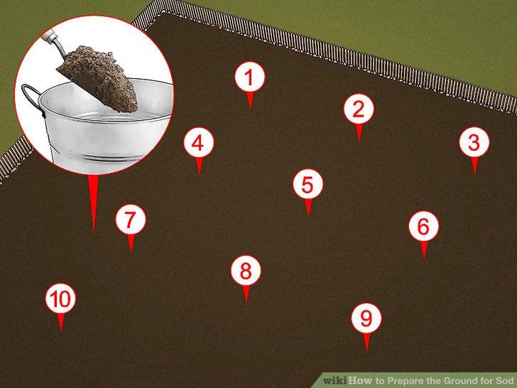 Lassen Sie eine Probe Ihres Bodens testen.