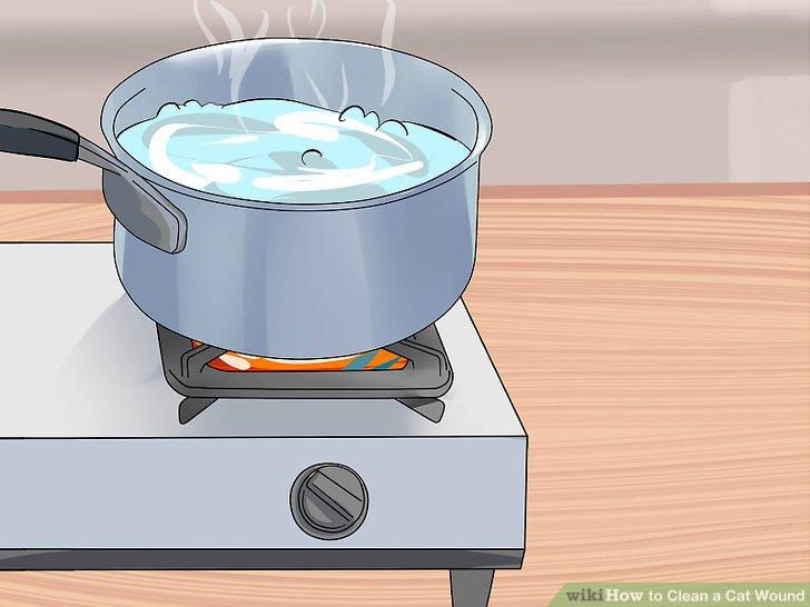 Kochen Sie etwas Wasser und verwenden Sie es, sobald es abgekühlt ist.