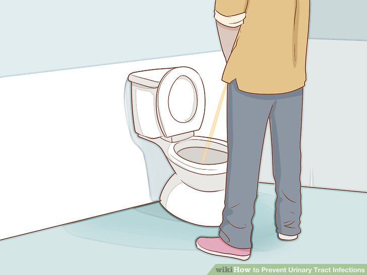 Urinate often.