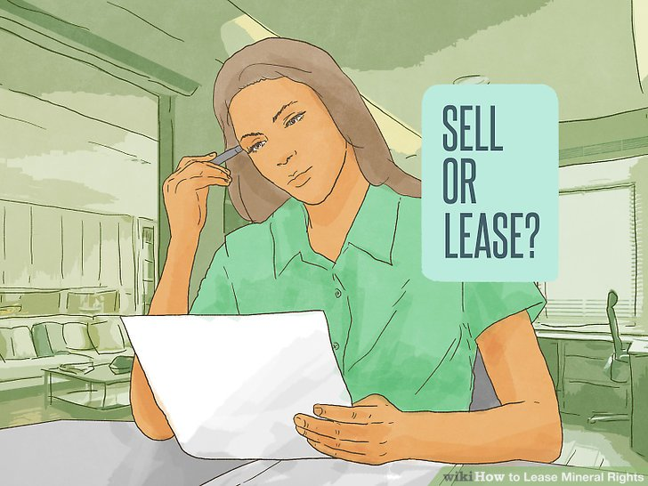 Decide whether to sell or lease your rights.