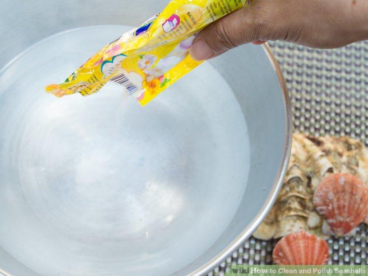 Verwenden Sie Bleichmittel, um Ihre Muscheln zu reinigen.