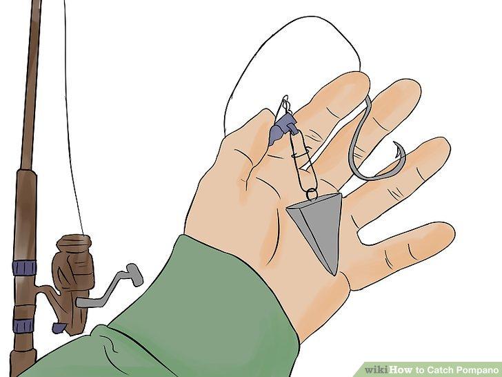 Verwenden Sie eine Spinnrute, ein Fischfindergerät, einen 2/0-Kreishaken und eine 5,5 kg (12 lb) lange Monofilamentschnur.