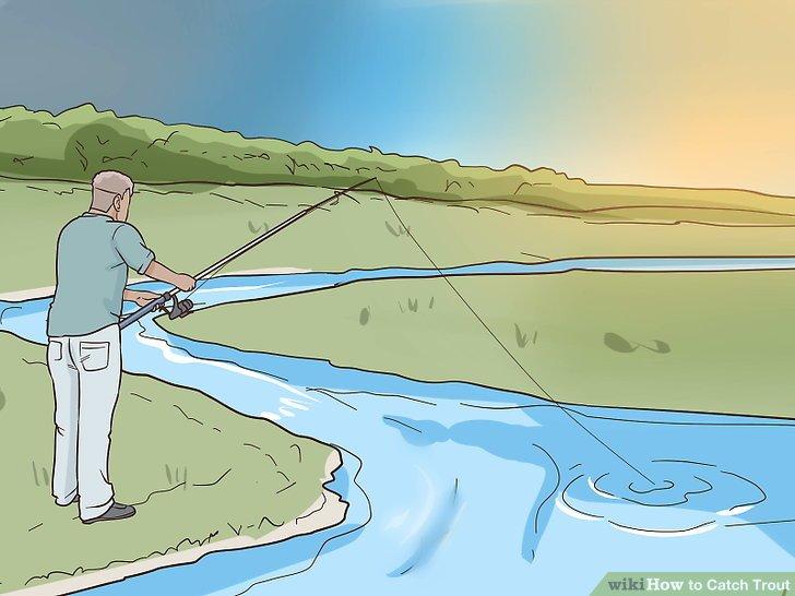 Fischen Sie morgens oder abends, wenn das Wetter schön ist.