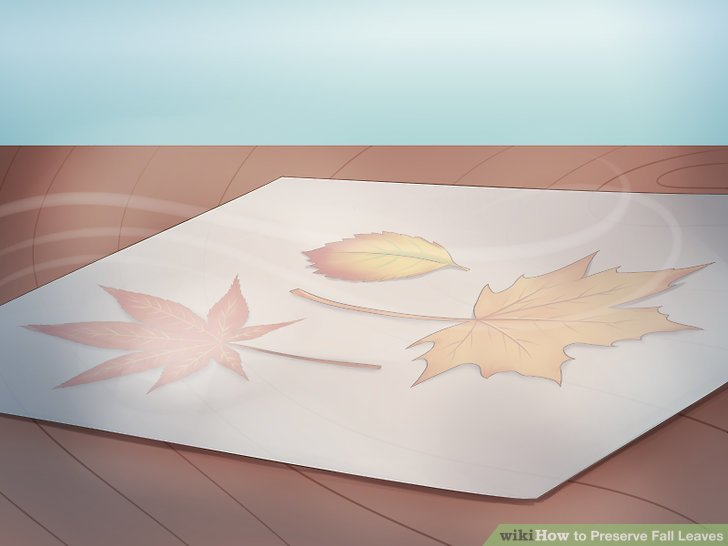 Seal the wax paper with your iron.