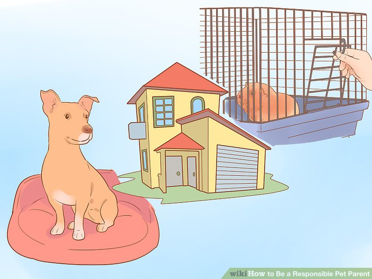 Wählen Sie ein Haustier, das zu Ihrem Lebensraum und Ihren Umständen passt.