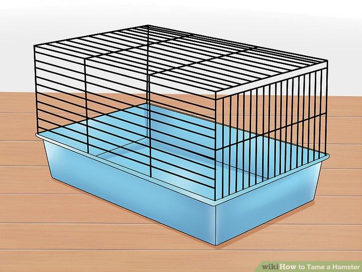 Gib deinem Hamster ein schönes Zuhause.