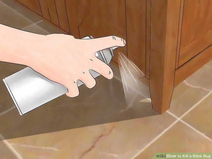 Paralyze stink bugs with hairspray.