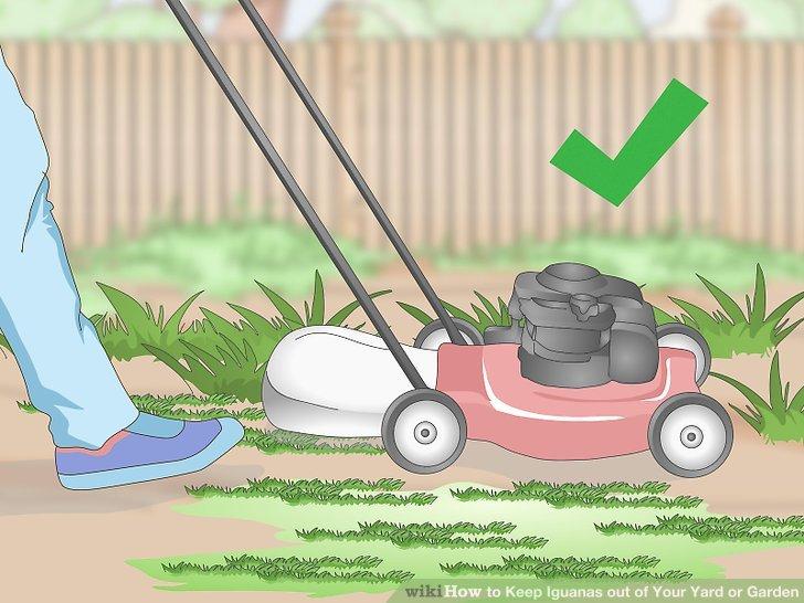 Halten Sie Ihren Garten sauber und gepflegt.