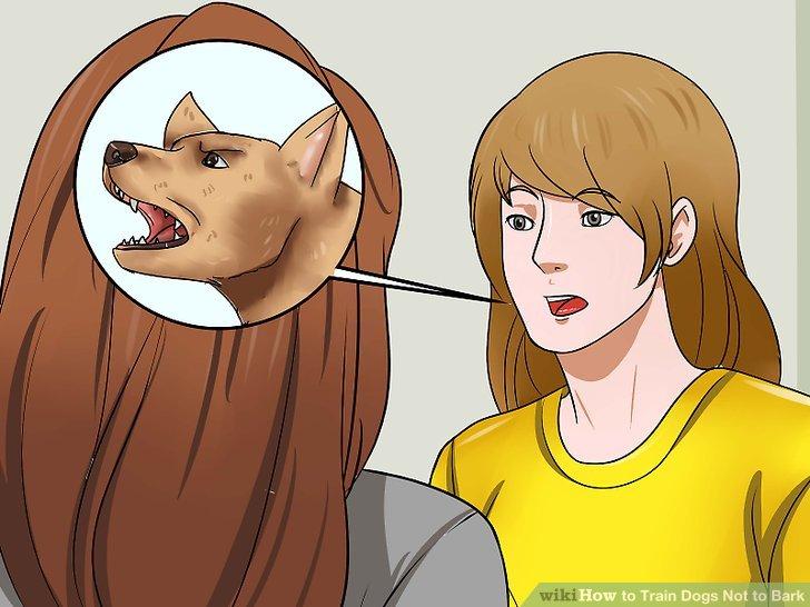 Minimieren Sie die Auswirkungen des Hundebellen auf die Nachbarn.