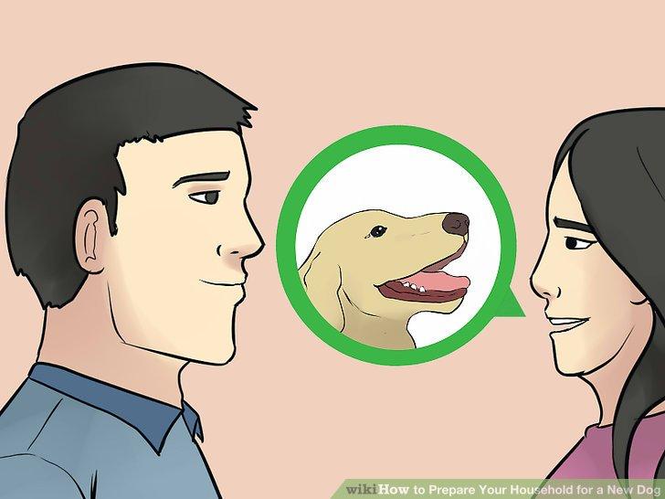 Sprechen Sie darüber, ob der Hund in Familienbetten schlafen oder auf der Couch aufstehen kann.