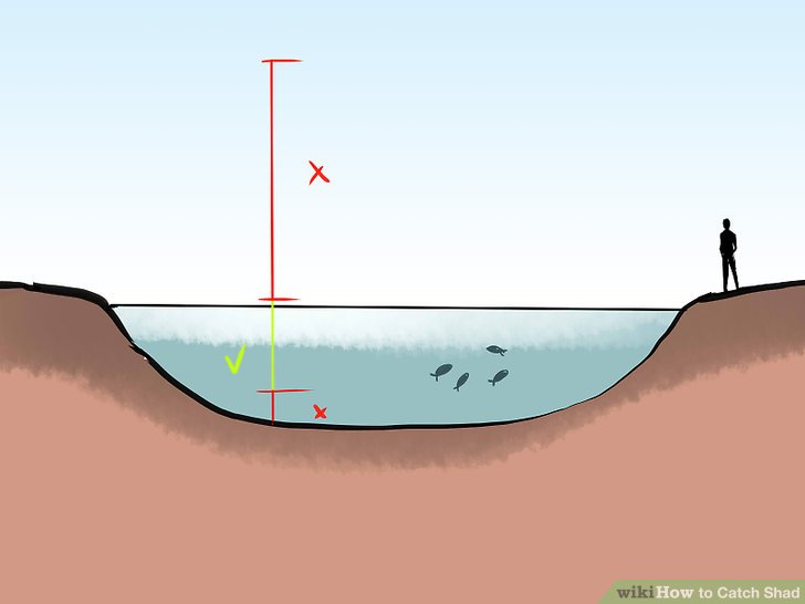 Fish in waters between 4 and 10 feet (1.2 and 3.0m) deep.