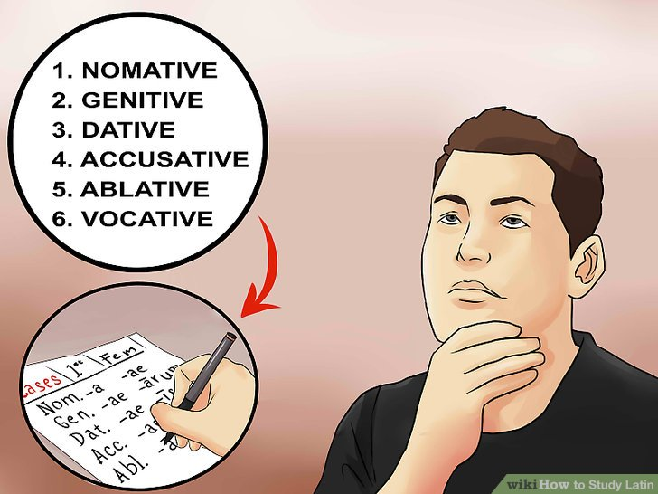 Memorize word forms.