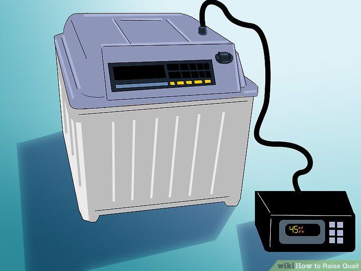 Halten Sie die Feuchtigkeit während der Inkubation bei 45 bis 50 Prozent und am 23. Tag des Schlupfes 65 bis 70 Prozent.