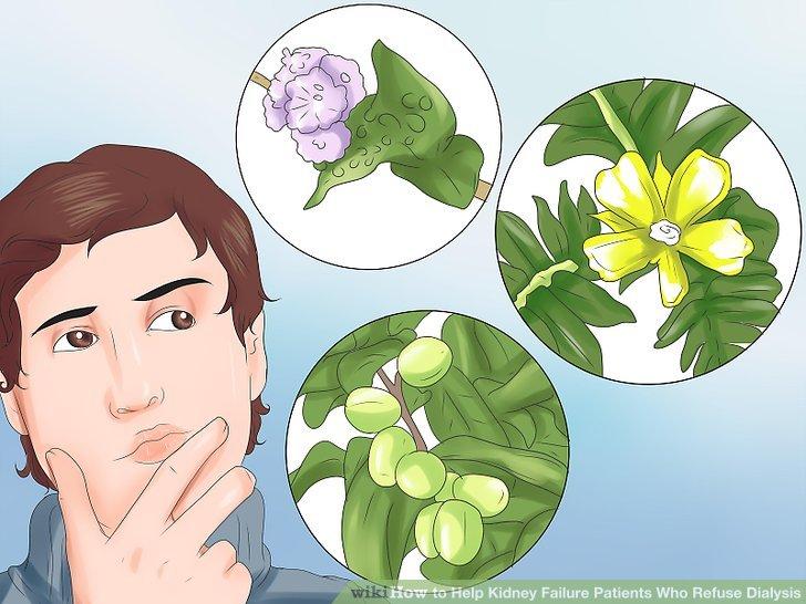 Versuchen Sie, pflanzliche Heilmittel nach Rücksprache mit einem Experten.