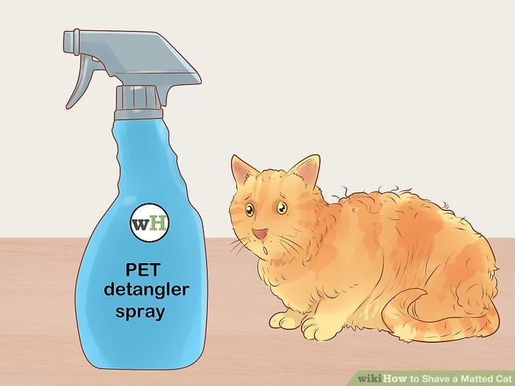 Kaufen Sie ein Entwirrungsspray für das Fell Ihrer Katze.