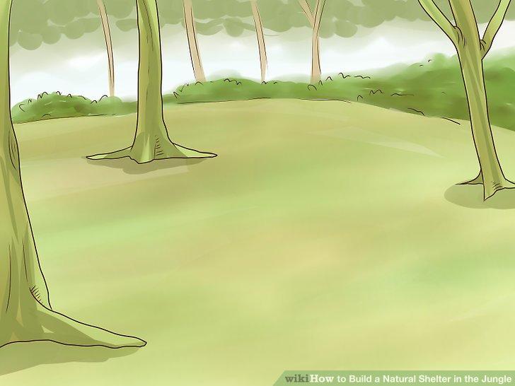 Legen Sie Ihren Schutz auf ein trockenes, flaches Stück Land.