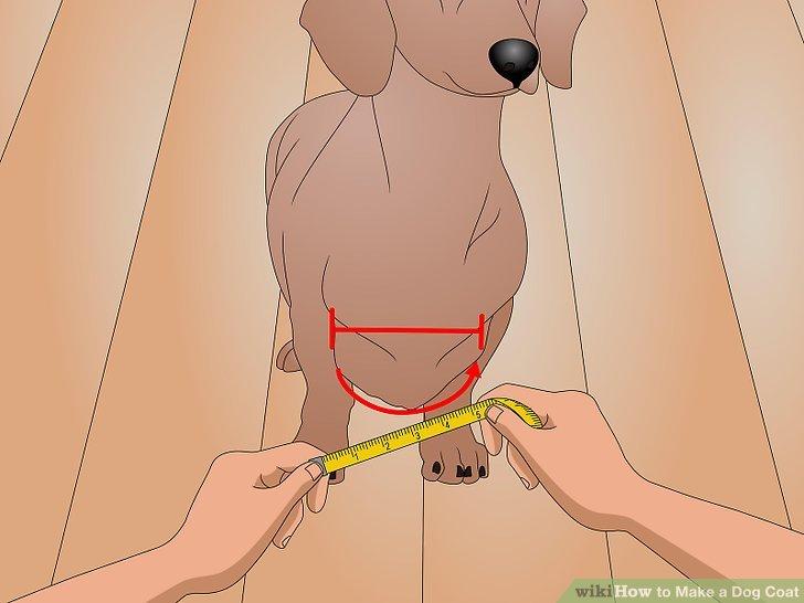 Messen Sie um die Brust des Hundes.