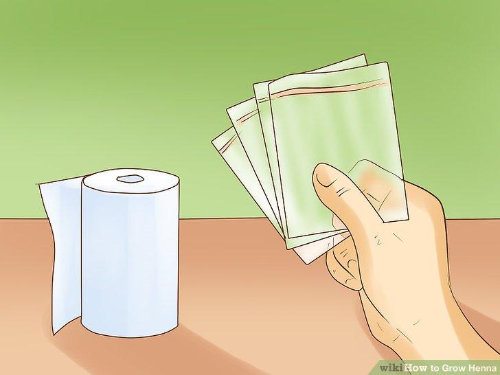 Sammeln Sie mehrere Papierhandtücher und eine Plastiktüte.