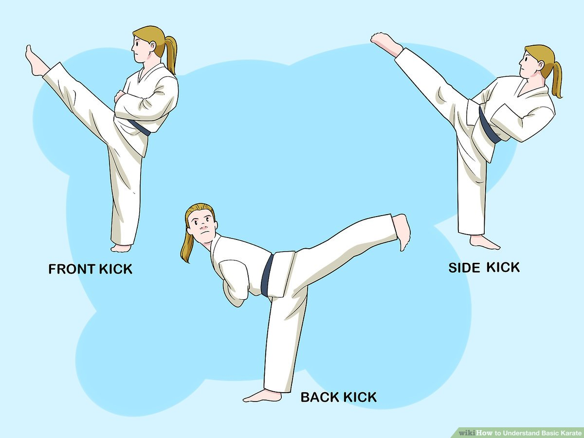 How to Understand Basic Karate: 10 Steps (with Pictures) - wikiHow