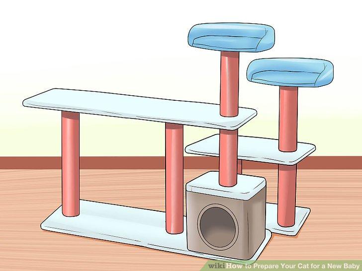 Erwägen Sie die Verwendung eines Feliway-Diffusors.