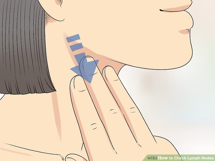 where are my lymph nodes diagram rj45 female connector wiring how to check 12 steps with pictures wikihow image titled step 3
