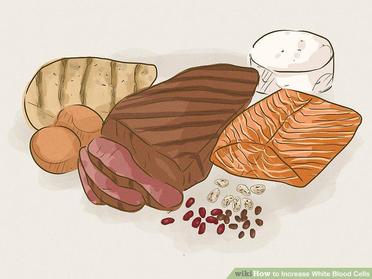 Essen Sie magere Proteine.