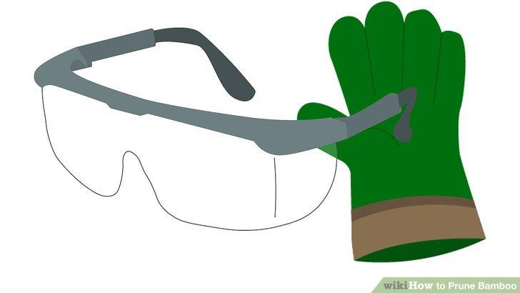 Reduzieren Sie im Frühjahr schwache oder tote Stöcke, um Ihre Pflanzen gesund zu erhalten.