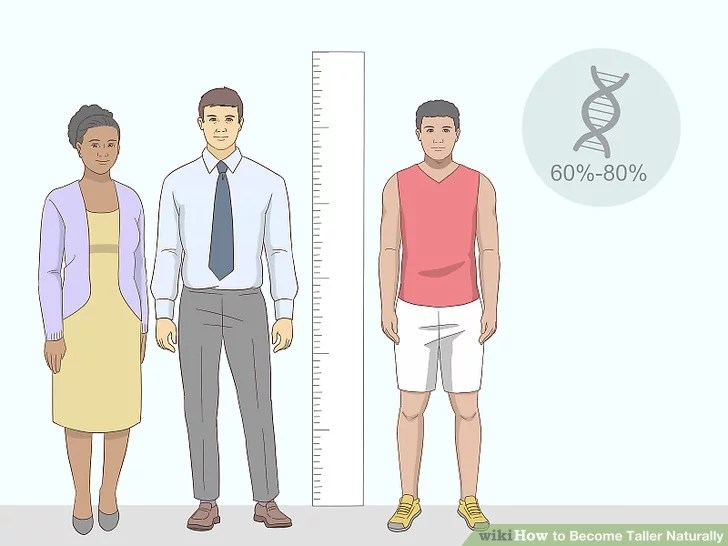 Image titled Become Taller Naturally Step 4