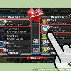 Flower Dragon Dragonvale Breeding | Gardening: Flower and