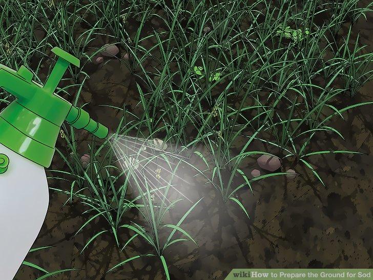 Töten Sie unerwünschte Unkräuter und Gras mit einem Herbizid.