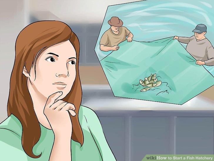 Finden Sie heraus, wie Sie Ihre Fische erfassen, handhaben und sortieren.