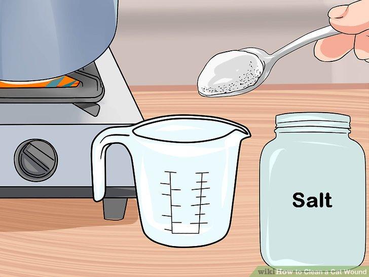Stellen Sie eine Salzwasserlösung her.
